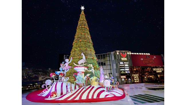 India's tallest Christmas Tree unveiled at Phoenix Marketcity Bengaluru