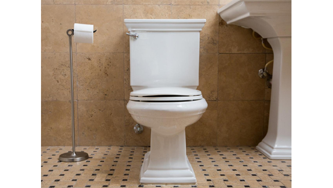 अपने टॉयलेट को लम्बे समय तक नया और तारो-ताजा रखने के नुस्खे