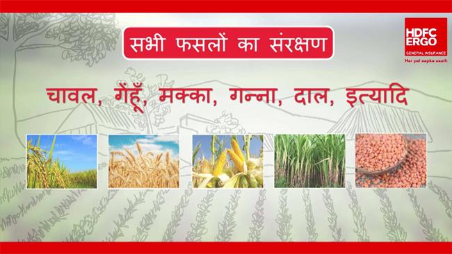 hdfc-ergo-implements-pradhan-mantri-fasal-bima-yojana-for-farmers-in-rajasthan-for-khrafi-season