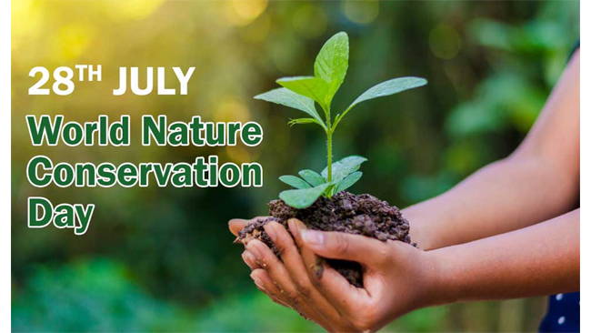 transforming-areas-of-operation-into-reserves-of-nature-cairn-reaffirms-its-commitment-to-the-environment
